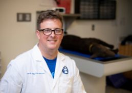 06/27/2019 - N. Grafton, Mass. - Dr. Sean Majoy, Assistant Professor of Clinical Sciences, poses for a portrait in the Simulation lab at Cummings School of Veterinary Medicine on June 27, 2019. Dr. Majoy taught clinical faculty, hospital staff, and fourth-year veterinary students through a demo of high-fidelity simulation mannequins that the U.S. military trains on to manage trauma and CPR for working dogs. (Alonso Nichols/Tufts University)